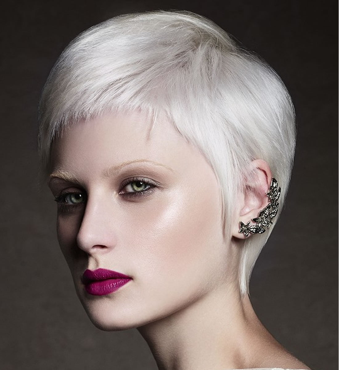 Platinum Blonde Hair Color Ideas For 2018 2019